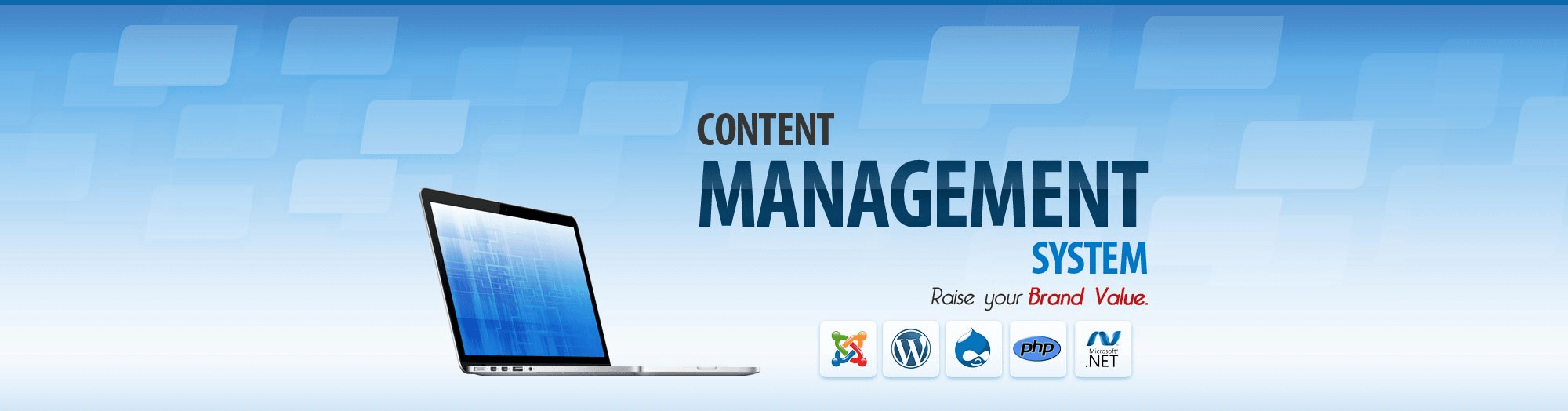 Content Management System Banner